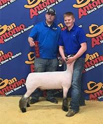Overman Club Lambs Winners